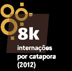 9 mil internações por catapora (2012)